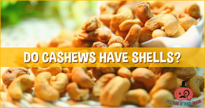 Do cashews have shells?